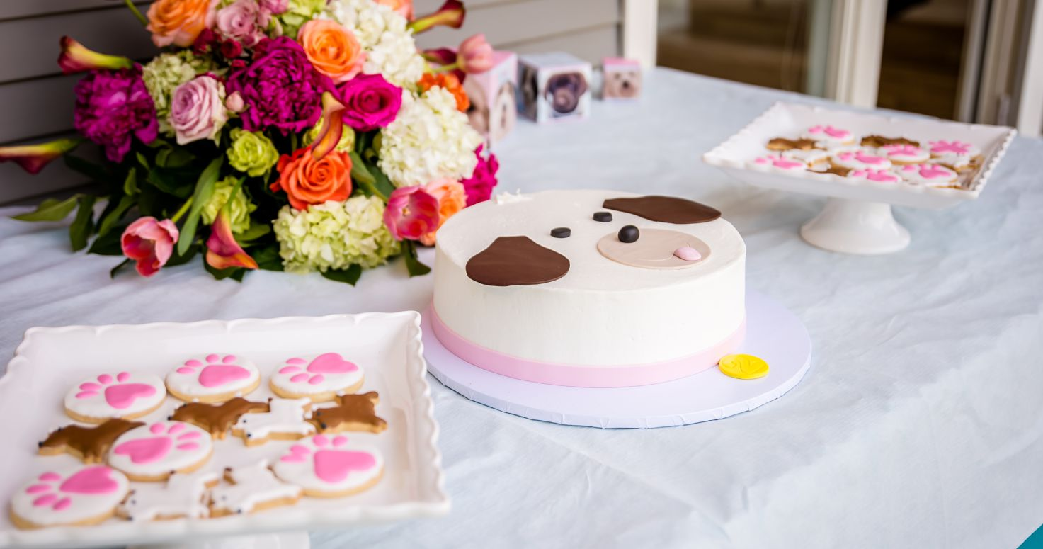 Event photography photo session 2nd second birthday party Victoria Cherie Puppy themed at their house in Pacific Palisades Los Angeles California 05/20/2018